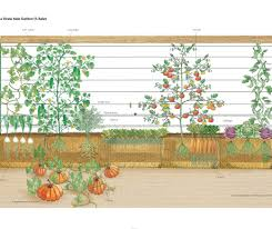 pergola vegetable garden trellis ideas awesome garden trellis