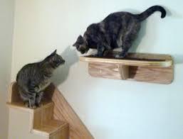 the vertical cat u0027s cat stairs contemporary cat furniture trees