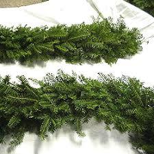 fresh balsam fir garland