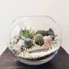 crystal desert world terrarium u2013 small bioattic specialty