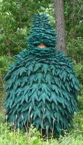 100 tree costume 8 green costumes tree