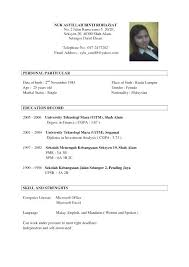 Application Resume Template Example Resume For Job Application Resume Example And Free