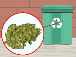 3 ways to dispose of a christmas tree wikihow