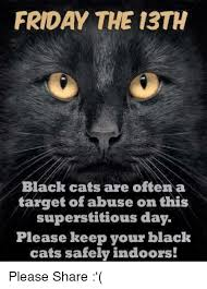 Abuse Memes - friday the 13th black cats are often a target of abuse on this