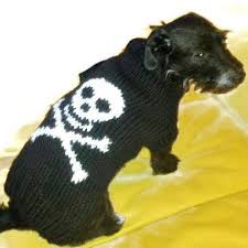 the 25 best large dog sweaters ideas on pinterest dog sweater