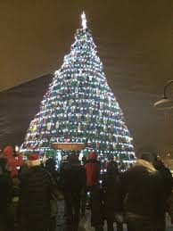 Real Christmas Trees Ipswich December 2017 U2013 Enduring Gloucester