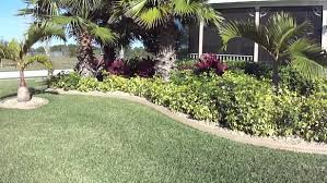 Front Yard Walkway Landscaping Ideas - tropical landscape ideas front yard