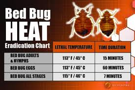 What Kills Bed Bug Eggs Bed Bugs Convectex Bed Bug Heat Equipment