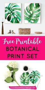 botanical prints free printable blossom bloom design