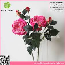 preserved roses preserved roses suppliers and manufacturers at
