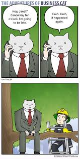 Business Cat Memes - top 22 adventure business cat memes to brighten up monday ritely