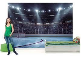 hockey stadium wall murals wall murals you ll love hockey wallpaper murals wall you ll love hockey stadium