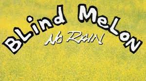 Soul One Blind Melon The Story Behind U201cno Rain U201d By Blind Melon Articles Ultimate