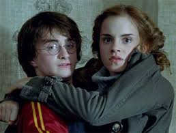 harry potter hermione reasons harry potter hermione granger should date be a couple