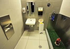 bagno per cani ora anche i nostri amici a 4 ze hanno un bagno privato all