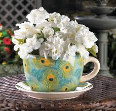 Peacock Feather Home Decor Peacock Feather Teacup Planter Wholesale At Koehler Home Decor