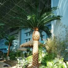 plastic palm trees for sale plastic palm trees for sale suppliers