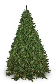 brighton fir prelit tree lights etc