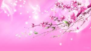 girly backgrounds for computer 35 high definition pink wallpapers backgrounds for free download