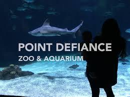 Zoo Lights Pt Defiance by Point Defiance Zoo U0026 Aquarium Barclaycard Travel Community