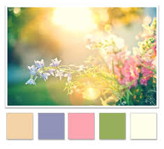 Beautiful Color Palettes by Concrete Color Pallet Regional Concrete How To Choose The Right