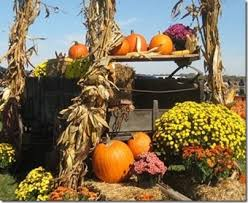 fall decorations for outside fall is for decorating jim jenkins lawn garden center