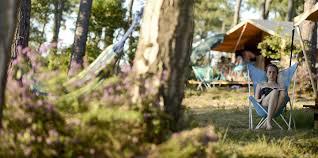 campsite in fontivielle in the heart of provence huttopia