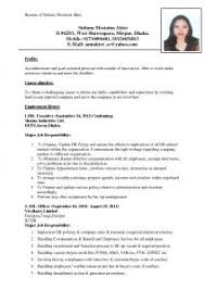 What Is A Resume For Jobs by Examples Of Resumes Cv For It Jobs How To Write A Brefash