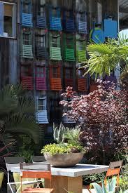 low light outdoor plants 9 secrets to growing succulent plants indoors gardenista
