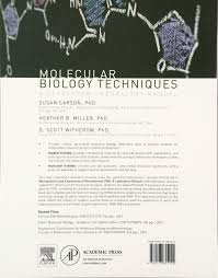 buy molecular biology techniques a classroom laboratory manual