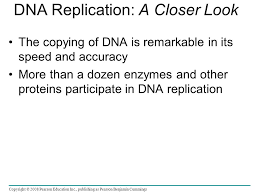 dna structure u0026 replication ap biology what is a nucleotide