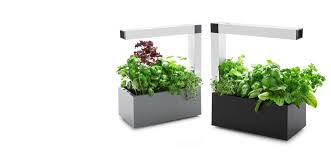 sana store tregren herbie indoor garden