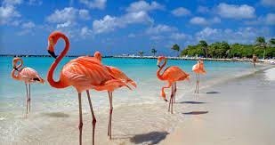 exotic destinations for fantastic vacations