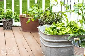 easy container gardening with vegetables and herbs