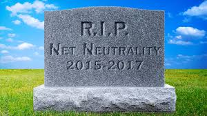 the death of the internet what happens now shelly palmer