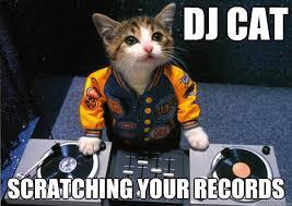 Dj Meme - dj cat refuses to play gangnam style dj cat quickmeme