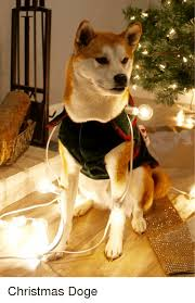 Doge Meme Christmas - 25 best memes about christmas doge christmas doge memes