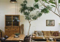 roomadness com apartment home garden