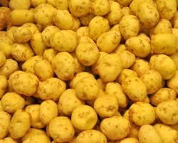cuisiner les pommes de terre de noirmoutier c est moi qui l ai fait 10 idées pour cuisiner les pommes de