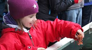 Alaska Travel Meaning images The 6 best kid friendly shore excursions and alaska family tours jpg