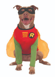 Extra Large Dog Halloween Costumes Halloween Costumes Dogs Pet Costume Ideas Money