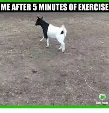 Exercise Meme - me after 5 minutes of exercise gone viral meme on me me