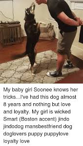 Boston Accent Memes - my baby girl soonee knows her tricksi ve had this dog almost 8 years