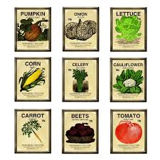 seed packets 118 best vintage seed packets images on vintage seed