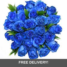blue roses serenity 12 or 24 blue tinted roses 1 800 blooming