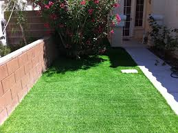 artificial turf whiterocks utah lawn and garden front yard ideas