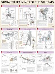 9 different workout for anatomy