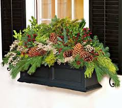 Window Box Decorations For Christmas by 19 Best Window Boxes Images On Pinterest Windows Flowers And