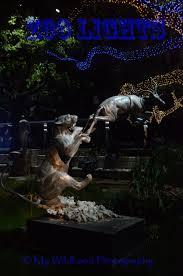 Zoo Light Houston by Zoo Lights My Wildhood