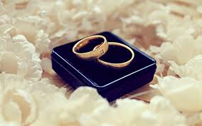 black box rings images Gold colored wedding bands in black box hd wallpaper wallpaper flare jpg